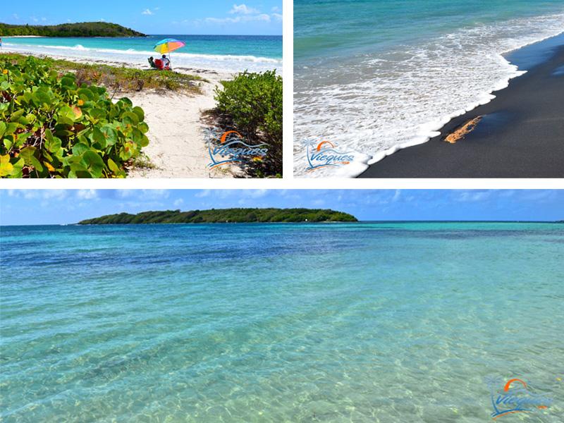 Beaches - Vieques Island, Puerto Rico