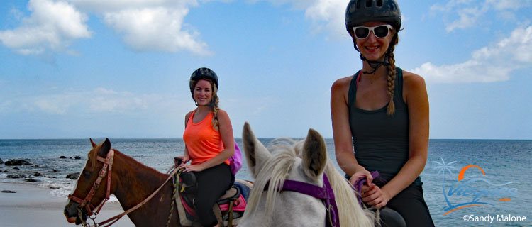 Horseback riding - Things to do in Isla de Vieques, Puerto Rico