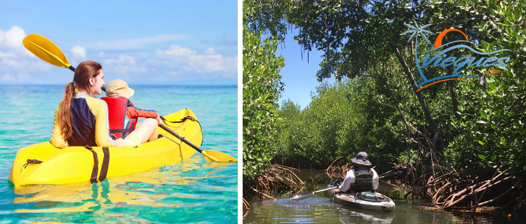 Kayaking - Things to do in Vieques Island, Puerto Rico