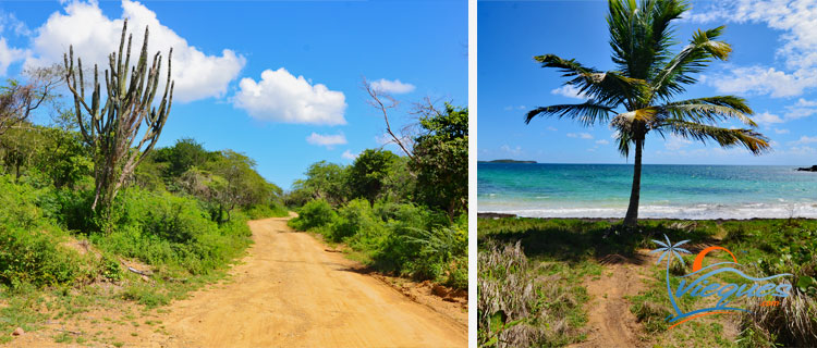 Exploring / Driving around the island - Things to do in Vieques Island, Puerto Rico