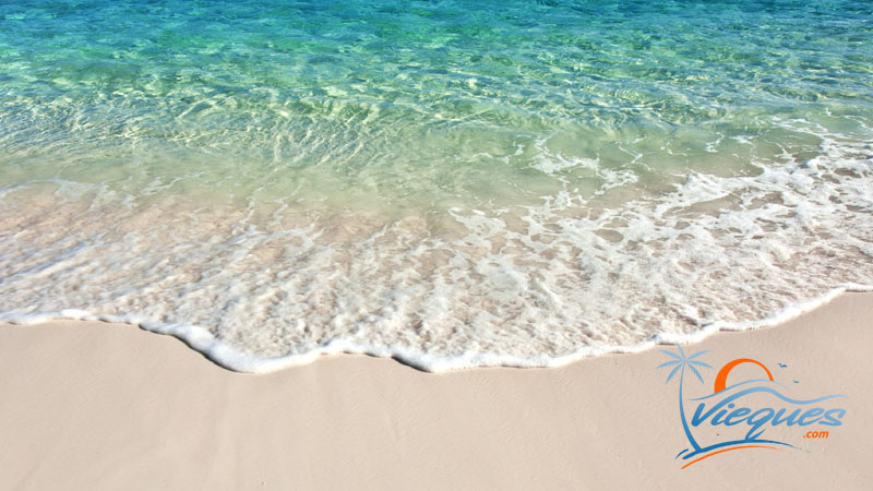 Vieques Tourism
